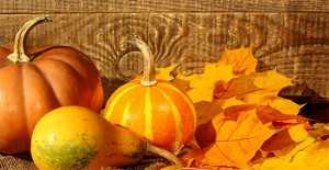 fall-promotions